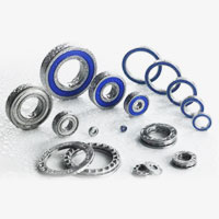 Stainless Steel Bearing